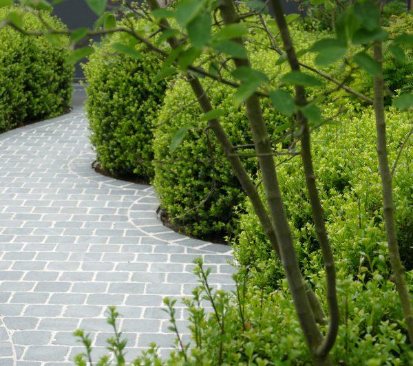 Uw tuin is altijd een heerlijke ruimte door de karakteristieke basis van groenblijvende planten in organische vormen.