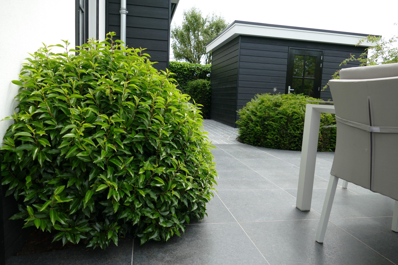 Onze tuinarchitect heeft al verscheidene exclusieve tuinen ontworpen.